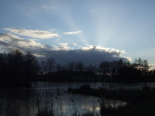 Roseaux, nuages, rayons de lumière