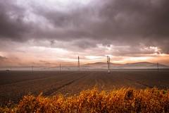 Campagna livornese (binoguzzi) Tags: campagna livorno orizzonte panorama grano xt10 fujifilm fujixt10 xf16mm xf16 landscape clouds view toscana tuscany