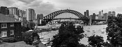 Seven Bridges Walk 28km (Manny Esguerra) Tags: outdoors sevenbridgeswalk sydney cityscape city