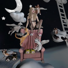 You can leave your cat on! (3) (gwen.enchanted) Tags: rebelhope truth mimikri deathrowdesigns maitreya catwa mesange pinkfuel vista