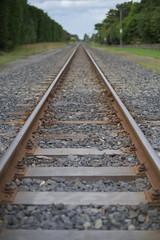 On the rails (Kiwi Jono) Tags: pentax pentaxk1 rails vanishing point outdoor railway track smcpfa50f14