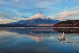 Morning Fuji at Swan Lake