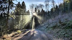 Nebelsonne (Aah-Yeah) Tags: nebel fog forest wald sonnenschein sonne sun sunrays strehtrumpf grassau achental chiemgau bayern