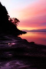 Hornby Sunrise_2369 (David Basiove) Tags: bc pacific coastline rock tree morning lowtide sunrise hornby island denman gulf fall october naturephotocontest pom
