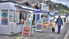 The seafront at Lyme Regis, Dorset (Baz Richardson (catching up again!)) Tags: dorset lymeregis seafront foodstalls takeaways shops streetscenes