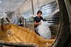 gwenle-c-zeppelin_31992854130_o (Elaine Le Floch) Tags: zeppelinphotographe taratari bateau navire mer ocean construction jute bangladesh asie goldofbengal shipyard chantiernaval voilier prototype