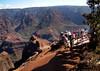 Waimea Canyon, Kauaʻi, Hawaii (JFGryphon) Tags: waimeacanyon kauaʻi hawaii