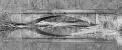 Quiet bridge (Walt Polley) Tags: 24120mmf4gednnikkor amishcountry copyright©2017waltpolley nikond500 pennsylvania