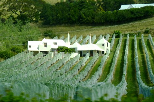 Te Mata Estate Winery on Te Mata Rd., New Zealand
