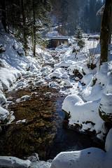 Stream in Winter (RGaenssler) Tags: oppenau allerheiligen allerheiligenwasserfall deutschland schwarzwald lierbach europa badenwürttemberg blackforest forestanera forêtnoire selvanera