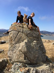yes they like to climb (beverlykaytw) Tags: california mountain dogs rock kids landscape climb outdoor marin ring