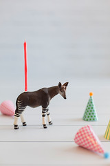 Pastel (| Les Hirondelles |) Tags: pink party macro cute childhood animal vertical closeup fun toy miniature funny child puppet shaped pastel object fake plastic figure celebrate