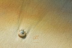 off (au large) (patrice ouellet) Tags: off aularge patricephotographiste