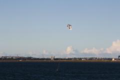 2015 Sydney: Botany Bay #13 (dominotic) Tags: beach water plane airplane boat yacht jet sydney australia nsw newsouthwales watersports tasmansea botanybay tanker sydneyairport brightonlesands portbotany 2015 penalcolony airportrunway sydneykingsfordsmithairport australianpenalsettlement