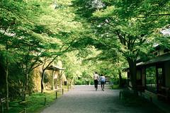 Love Walk - Ohara (大原) in Summer, in Kyoto (京都) Japan