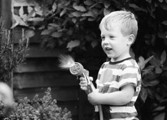 Watering the plants B&W (Jonathan Kiernan) Tags: blackandwhite canon5dmkiii ef70200f28lismkii