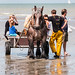 "2015_08_07_Paardenvissers_Oostduinkerke-81 • <a style=""font-size:0.8em;"" href=""http://www.flickr.com/photos/100070713@N08/20410250641/"" target=""_blank"">View on Flickr</a>"