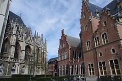 Mechelen 2015 - 10 (Mr. Tomato Bread) Tags: mechelen 2015