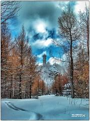 Hochwaldturm im Winter