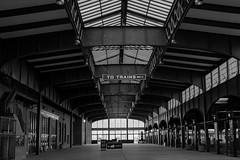 All Aboard (Nikon D500 Shooter) Tags: libertystatepark new jersey train station blackwhite