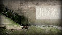 Mat ttieu (YOUGUIE) Tags: paris streetat craie chalk matt tieu matttieu