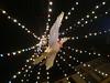 Christmas (denismartin) Tags: denismartin vosgesmountain vogesen vosges lorraine france light nightphotography night lightening plombières christmas christmasmarket