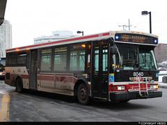 Toronto Transit Commission #8040 (vb5215's Transportation Gallery) Tags: ttc toronto transit commission 2007 orion vii
