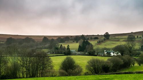 Wales Christmas 2016-4