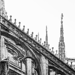 Monochrome in the cathedral of Milan (Reflexionist) Tags: duomo milano duomodimilano chiesa cattedrale tetto terrazza terrazzadelduomo architettura scultura guglie guglia pinnacolo pinnacoli archirampanti gargoyles statue biancoenero monocromo allaperto prospettiva vistaprospettica venerandafabbricadelduomo gotico rinascimento barocco milan milancathedral church cathedral roof terrace thedometerrace architecture sculpture spiers spire pinnacle pinnacles flyingbuttresses statues blackandwhite monochrome outdoors perspective ripeoldfactoryofthecathedral gothic renaissance baroque nikonitalia nikond750 d750 reflexionist