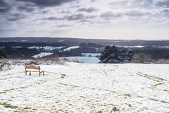 Newlands Corner in the Snow E1130348_12 (tony.rummery) Tags: bench em10 guildford landscape mft microfourthirds newlandscorner omd olympus snow surreyhills winter albury england unitedkingdom gb
