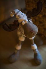 Rudolph (Eklis273) Tags: rudolph rentier reindeer figur stuffedanimal christmas weihnachten braun brown red rot indoor knittedcap strickmütze mütze schuhe shoes samyang85mm sonya6000