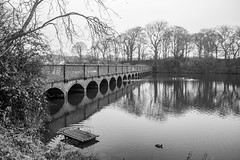 Shades Of Grey (ianbonnell) Tags: carrmilldam carrmill sthelens merseyside monochrome blackandwhite