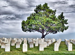 Aug 10 2016 - Living among the dead (La_Z_Photog) Tags: lazy photog elliott photography battle little big horn national cemetery crow agency montana custer headstones tombstones graves clouds 081116us212tocrowagencybeartooth