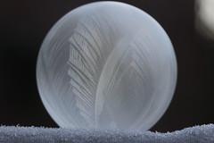 Frozen soap bubble (Björn S...) Tags: seifenblase soapbubble bulledesavon bolladisapone pompadejabón frost ice eis explore inexplore