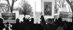 2017.02.04 No Muslim Ban 2, Washington, DC USA 00406