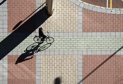 (cherco) Tags: composition composicion city ciudad canon calle floor silhouette solitary solitario shadow silueta sombra street suelo solo lonely geometric bicycle bike bicicleta man urban rectas aloner carretera road carril 5d
