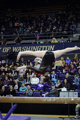 2017-02-11 UW vs ASU 136 (Susie Boyland) Tags: gymnastics uw huskies washington