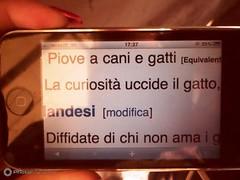 Pellegrino_Giorgia_10