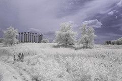 Infrared Arboretum (Mark Alan Andre) Tags: sky clouds landscape dc washington columns arboretum national infrared
