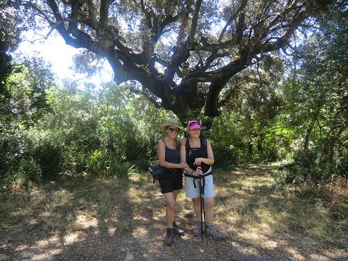 Fotografía Paquita Valdi Marcha 391 27 y 28 de Junio Parque Natural de la Encina de Lastra Ourense 2 (8)
