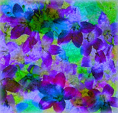 Expressing An Impression of Blue and Mauve (virtually_supine) Tags: flowers photomanipulation digitalart creative blues vividcolour textures expressionism layers mauves emilnolde picasa3 photoshopelements9 pse9effectswatercolourspatter picasa3effectspencilsketch tmichallengeinthestyleof…theexpressionists