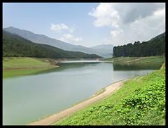 Munnar : Madupetty Lake (indianature13) Tags: india mountain lake nature tea kerala april westernghats munnar 2015 topstation kundalalake madupettylake indianature sholaforest highranges