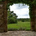 Meadow view thumbnail
