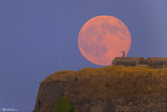 Blue Family Moon (Bill-Metallinos) Tags: new old family pink blue moon heritage town big san fort unesco full greece astrophotography hour marco astronomy corfu korfu fortress astrophoto kerkira metallinos supermoon superfullmoon astrolandscape astrocorfu astrovox
