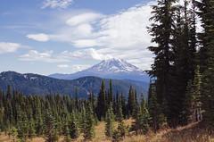 From the Trail (sherril8) Tags: camping 35mm hiking trail backpacking nikkor mtadams giffordpinchot goatrocks d5100 nikond5100