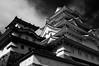 Himeji Castle (hinatahugu29) Tags: white castle monochrome japan nikon 28mm culture himeji shiro d300 42mm