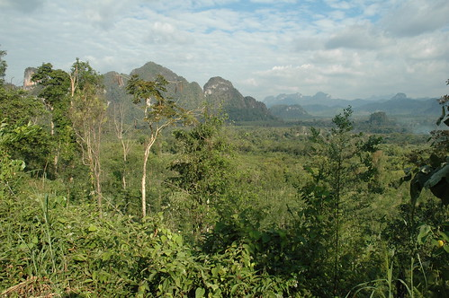 Khao Sok National Park - 2009(2)