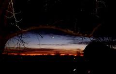 Sunset (LaLa83) Tags: sunset dusk crescentmoon twilight barn stoutville ohio fairfieldcounty 2016 december winter mybackyard samsung galaxy instagram s6 cellphonephoto tree