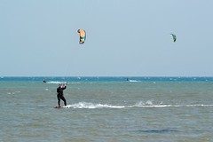 2_01_2017 (playkite) Tags: kite kiteboarding kiting kitelessons big day egypt elgouna hurghada vacations adventure fun power january кайт кайтсерфинг кайтинг кайтбординг кайтшкола красное море египет хургада отдых