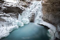 Frozen (Margarita Genkova) Tags: frozen winter snow rocks icicles johnston canyon banff national park